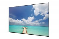 "SAMSUNG ED-D Series 75"" Direct-Lit LED Display"